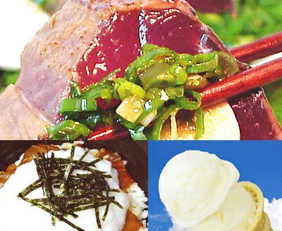 ★ (s004)! Tosa satisfied ◆ book and tuna with scallion 200 g bonito tataki 250 g! It's Yam also ice ★ cod if fees 324 Yen is required