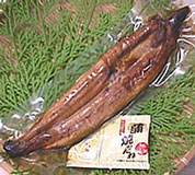 Translation and ★ household eel, whole entire (100 g or more) ★ hot Gohan in the immediate is the highest as 'Don' midsummer ox
