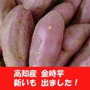 Shinimo-tosakintoki