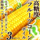 Corn-fruit-boil02-3h