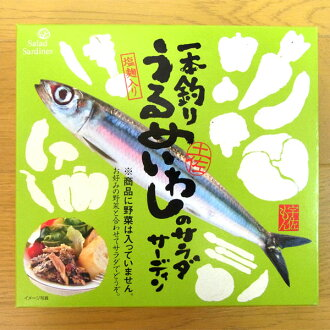 ★ one fishing うるめいわし サラダサーディン ★ [always] a [ZAO] freezing ( HMYS) * cool flight 105 yen and +210 pie cod is required.