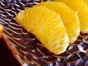 マル研の八朔 はっさく 約3キロ 高知産 「マル研」限定 ご家庭用 玉数おまかせ(8〜11玉ほど) 送料無料