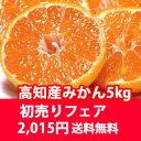 Hatsuuri-mikan5k2015