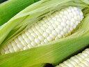 650-corn-fru-whi01