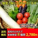 ★送料無料 「とれたて野菜」 8種類セット詰め合わせ 高知産 レシピ・追加機能付き ★ [Qv10]