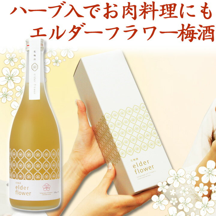女性 絶対喜ぶ お酒 梅酒 ギフト バレンタイン...の商品画像