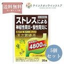 【第2類医薬品】【送料無料】(5個セット) 漢方胃腸薬 創至聖 20包