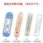 プラスチック製 温度計 20cm 48352