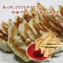 【初回限定】【送料無料】冷凍生餃子少量お試しパック