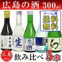 Hiro300-5_main