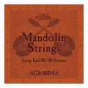 ARIA AGS-100MA Mandolin マンドリン弦