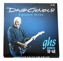 GHS GB-DGF 10-48 David Gilmour Signature Blue Set エレキギター弦