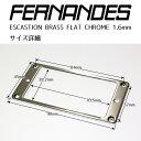 FERNANDES ESCASTION BRASS FLAT CHROME 1.6mm