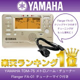YAMAHA TDM-75 �� Flanger FA-01 ���塼�ʡ��������ȥޥ������å�