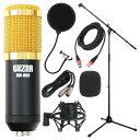 SD GAZER BM-800 Black コンデンサーマイク Dicon Audio MS-003 マイクスタンド SD GAZER PF1 ポップガード Silk Road LM203-3 3mマイ..