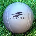 FIMP-680C インパクトパワーボール12個入り野球 バッティング練習重いボールを打ってパワーア...