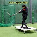 野球 バッティング練習用 トランポリン FBTP−1480 フィールドフォース 野球 打撃練習 打撃上達