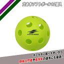 バッテング練習用 穴あきソフトボール12個入 FSBB-12 フィールドフォース 打撃練習 ソフトボール2号サイズ