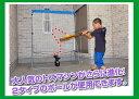 野球 打撃練習一人で連続ティーバッティングFTM-261AR2個人練習に最適省スペースでバッティング練習野球 打撃上達器具