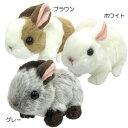 ウサギ Rabbit ぬいぐるみ アニマルグッズ通販 【RCP】