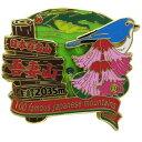日本百名山 ピンバッジ 2段 ピンズ 吾妻山 エイコー コレクションケース入り トレッキング 登山グ