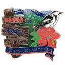 日本百名山 ピンバッジ 2段 ピンズ 赤城山 エイコー コレクションケース入り トレッキング 登山グ...