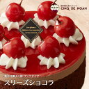 スリーズショコラ サンクドノア ケーキ 12cm【アントルメ...