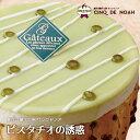 ピスタチオの誘惑 サンクドノア ケーキ 12cm【アントルメ...