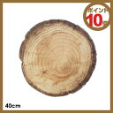 ディテール DETAIL フォレストコレクション Forest collection ラウンドクッション round cushion 2199R 40cm ■【ポイント10倍】【10P29Aug16】