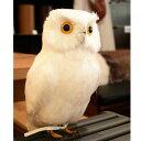 RoomClip商品情報 - プエブコ PUEBCO ARTIFICIAL BIRDS バードオブジェWhite Owl白フクロウLサイズ /111070