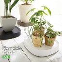 テラモト TERAMOTO ティディ Tidy 植木鉢トレイ プランタブル ラージ OT-668-101
