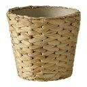 RoomClip商品情報 - IKEA(イケア) FRIDFULL 鉢カバー ホテイアオイ d60165427