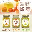 国産蜂蜜 熊本県産純粋蜂蜜詰合せギフト(蜜柑・不知火・晩白柚) 05P01Oct16