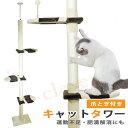 200円off+ 本日最終 最大5倍 ×クーポン 入荷しました    キャットタワー 突っ張り 麻紐 爪とぎ付き   キャットポール 木登り ネコタワー 高さ230〜260cm シンプル スリム 猫のお家