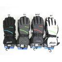 【寒さを防ぐ!指先まで暖かい!】PHENIX フェニックススキーグローブ Performance Gloves Over PS478GL33【グローブ】