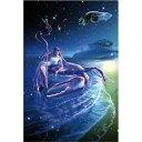 スターリーテイルズ the Zodiac by KAGAYA 1000ピース キャンサー -蟹座-【光るパズル】 (50cm×75cm、対応パネルNo.10)