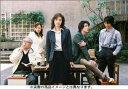 離婚弁護士 DVD-BOX 天海祐希