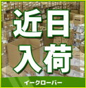 都市ガス(12A/13A)◆1/25出荷OK!♪ノーリツ ガ...