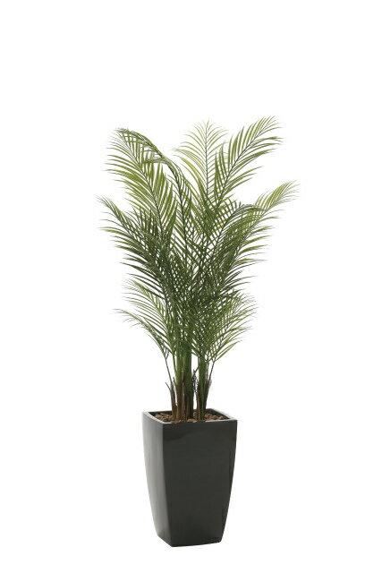 【送料無料】《アートグリーン》《人工観葉植物》光触媒 光の楽園 アーバンアレカパーム1.7(ポリ製)