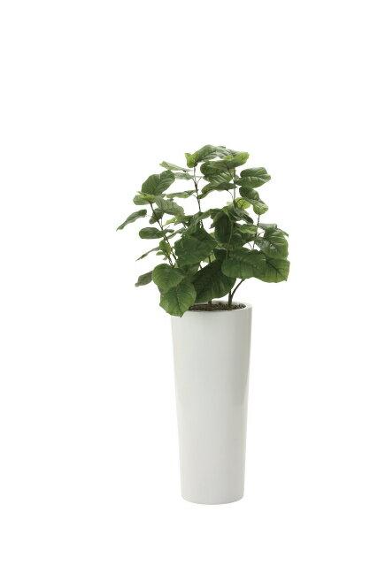 【送料無料】《アートグリーン》《人工観葉植物》光触媒 光の楽園 ウンベラータ1.4