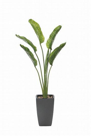【送料無料】《アートグリーン》《人工観葉植物》光触媒 光の楽園 オ—ガスタ1.85
