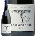 フリードリッヒ ベッカー ピノ ノワール カマーベルク 2012 Friedrich Becker Pinot Noir Kammerberg 赤ワイン ドイツ ファルツ グラン クリュ 辛口 ヘレンベルガー ホーフ
