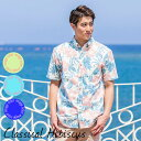 アロハシャツ メンズ 結婚式 ハイビスカス Classical Hibiscus 男性用 半袖 5Lまで 大