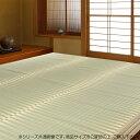 【代引き・同梱不可】 掛川織 花ござ かげろう 2畳 約176×176cm HRM873557