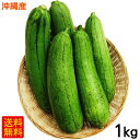 沖縄産へちま(ナーベーラー)1kg │沖縄野菜 食用ヘチマ│