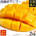 沖縄産マンゴー2kg(4〜6玉)化粧箱 <ギフトに最適>