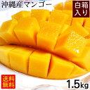 沖縄産マンゴー1.5kg(4〜6玉)白箱