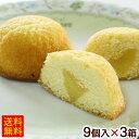 シークワーサーシフォンケーキ 9個入×3箱 【送料無料】