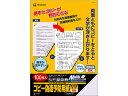 ヒサゴ/コピー偽造予防用紙浮き文字A4両面100枚/BP2110