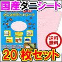 日本製 ダニ捕りシート レギュラーサイズ(12×1
